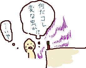 虫疑惑.png